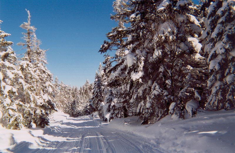 Snowmobile trails in NH