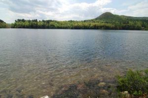 Homes For Sale On Duncan Lake Nh
