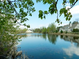 Willow Pond at Long Bay