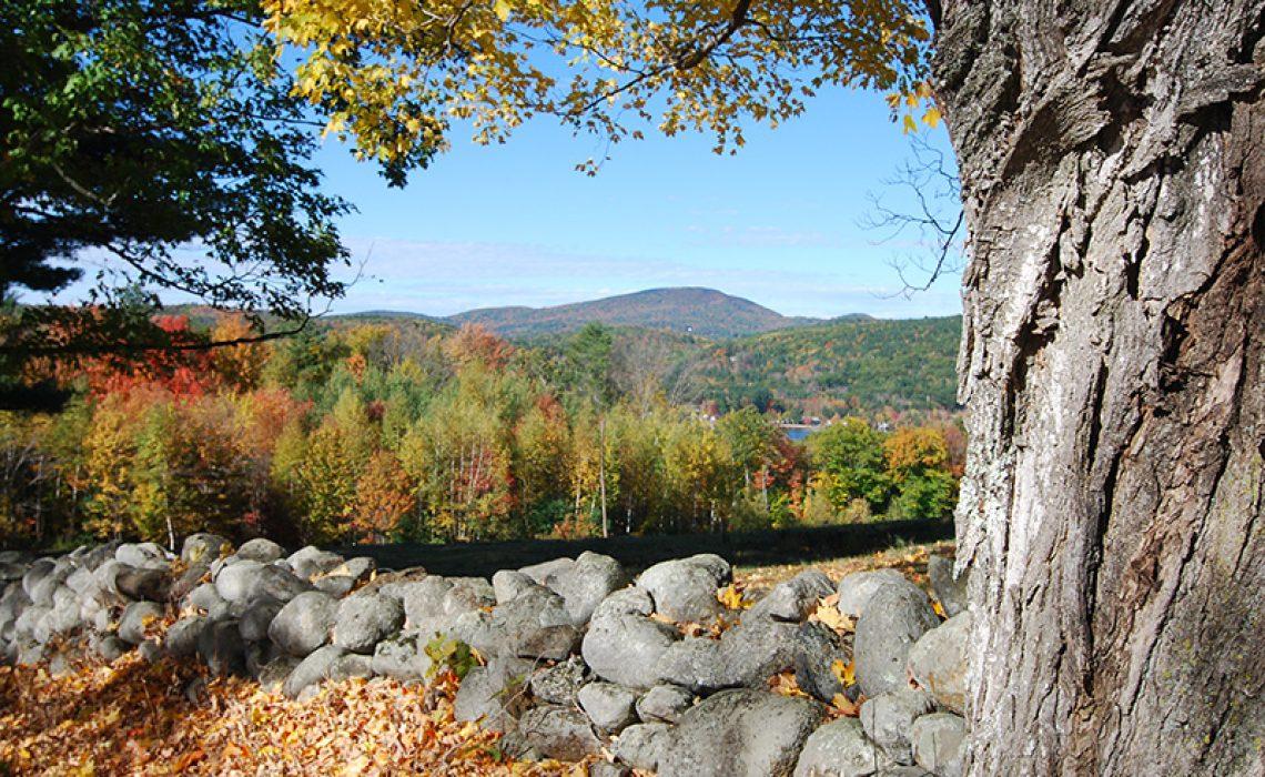 Fall Season Foliage in NH