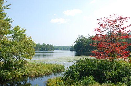 Lake Wicwas
