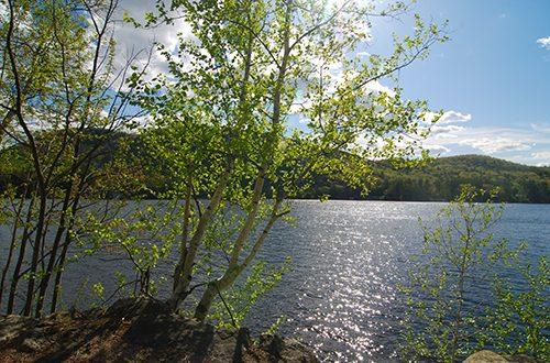 Lake Winona