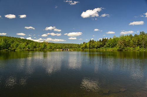 Millen Lake